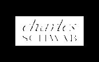 charles-schwab-logo-300x188